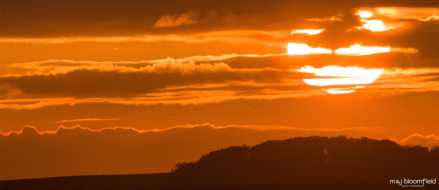 Sunset over the hills and fields of North Norfolk England taken by M & J Bloomfield wildlife and nature photographers